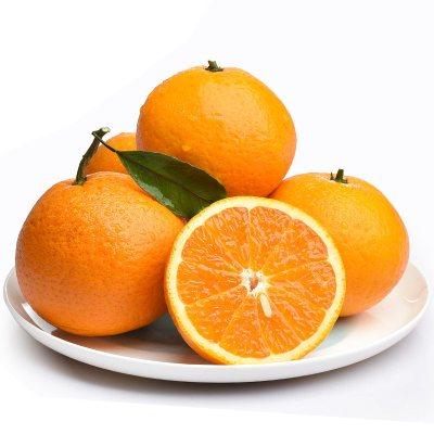 【年后2月5日发货】苗家十八洞 湘西保靖脐橙5斤装 单果果径60-65mm左右 脆甜爽口时令新鲜水果橙子