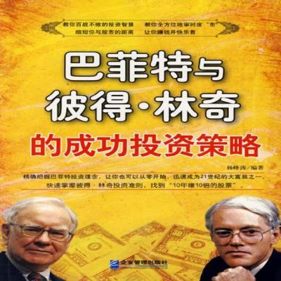 正版巴菲特与彼得林奇的成功投资策略 杨峰涛著 企业管理出版社企