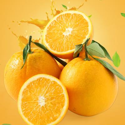 【年后2月3日开始发货】【中果60-70mm 净重9斤】尧之谷眉山脐橙手剥橙子批发当季甜【收藏加购送开橙器】