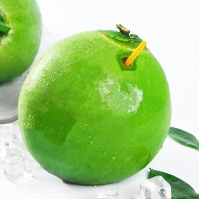 海南椰子6個裝 椰青 水果 老椰子 帶皮椰青 耶子