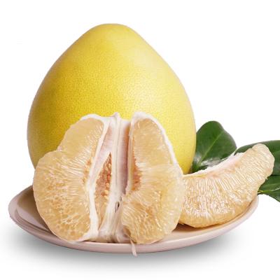福建琯溪蜜柚白肉1個( 拍2件合并發貨 單果750-1200g)(親多多 國產柑橘)