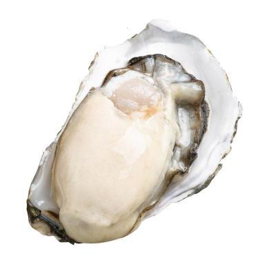 新鮮牡蠣鮮活生蠔帶特大海蠣子海鮮水產貝類 5斤小號