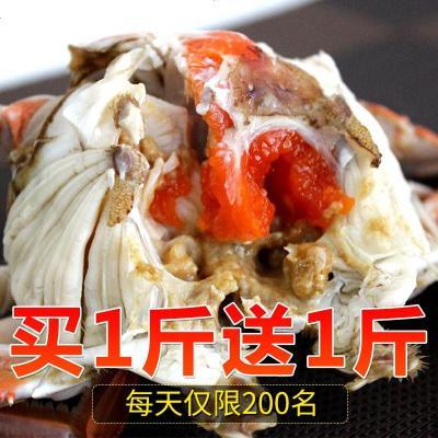 【買1送1】三座海 梭子蟹鮮活 500g 2-3只 海螃蟹公蟹紅膏母蟹鮮活海鮮 海捕飛蟹 大螃蟹鮮活梭子蟹 新鮮海鮮水產