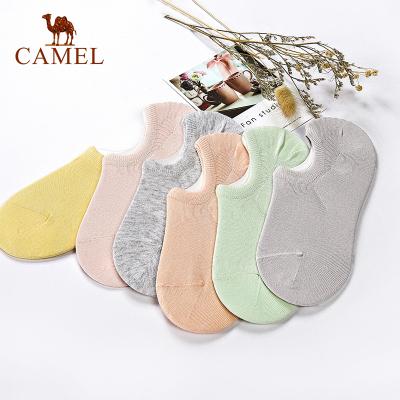 CAMEL駱駝襪子女短襪淺口 韓國可愛棉質夏天透氣隱形船襪6雙裝