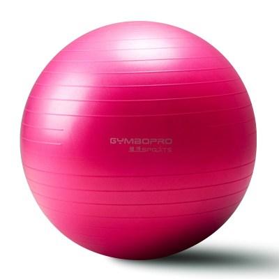 美體球感初學者旋轉個性大球瑜伽課程裝備用球健身球體皮球練手