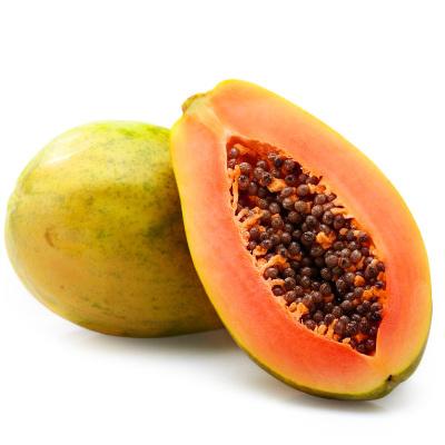 树懒果园 海南红心番木瓜 2个装 单果600-700g 新鲜水果