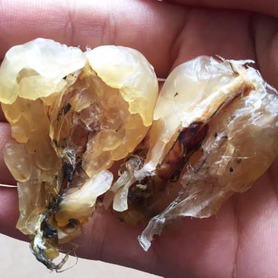 【20年雪蛤经验】长白山雪蛤正品 雪蛤油 林蛙油 雪蛤素20克