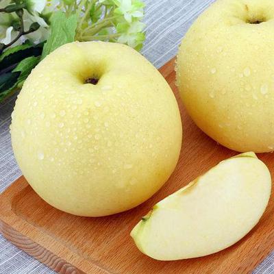 【48小時內發貨】【譽福園】山東煙臺脆甜奶油富士蘋果5斤裝75-85mm