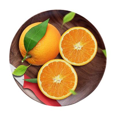 湖北秭归脐橙 2.5斤 单果约60mm 脐橙 橙子 新鲜水果 生鲜水果 陈小四水果 国产 其他