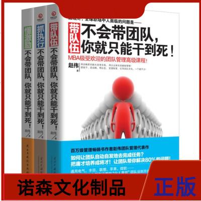 不會帶團隊你就只能干到死 3冊 抓執行+懂激勵+帶隊伍 企業經營管理書籍 書 帶團隊如何管理學 MBA領導力執行