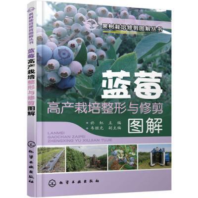 果樹栽培修剪圖解叢書--藍莓高產栽培整形與修剪圖解