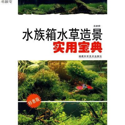 水族箱水草造景實用寶典9787533532451王慶祥 編著福建科技出版