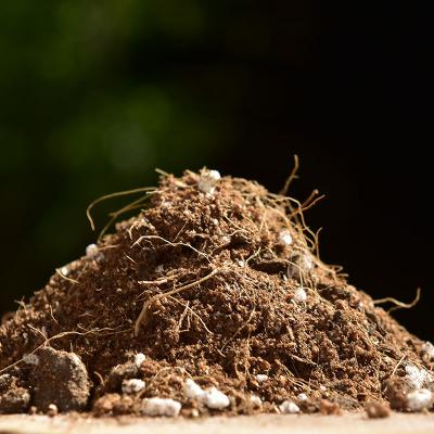多肉種植土有機肥料腐殖土多肉綠蘿花土