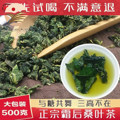 新鮮霜后桑葉茶2019特級散裝精選500g無糖降壓降脂養生茶