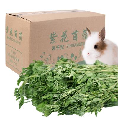 苜蓿草干草幼兔兔子草新鮮豚鼠龍貓荷蘭豬提摩西草兔糧兔飼料干草