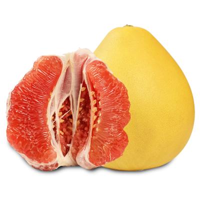 硕馥果园 福建平和蜜柚红心柚子 1个装 2-3斤 新鲜水果
