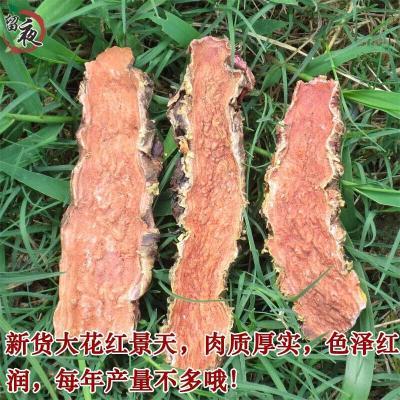 西藏大花紅景天片 紅景天可磨粉泡茶泡酒500g