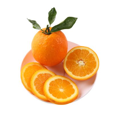 【酸甜夏橙2.5斤 迷你小果】橙子湖北宜昌秭歸臍橙當季應季新鮮水果整箱手剝夏橙