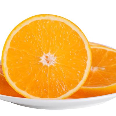 【偶数发货】湖南麻阳冰糖橙2.5斤小果 果径约45~55mm 迷你橙新鲜香甜橙子当季新鲜现摘水果