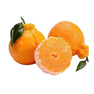 四川 不知火 丑橘 8斤 約18個 丑桔 丑八怪橘子 蘇寧新鮮水果非耙耙柑春見