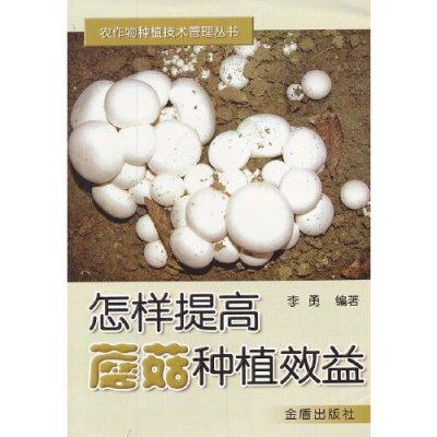 怎樣提高蘑菇種植效益
