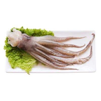 新鮮魷魚頭 魷魚須 魷魚爪 青島特產 海鮮水產 魚類海鮮 1kg