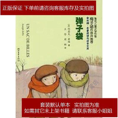 弹子袋 约瑟夫·若福 浙江文艺出版社 9787533926250