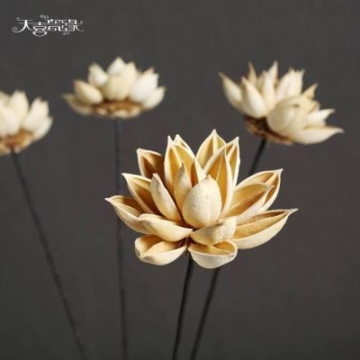 云南干花荷花插花束仿真花 落地裝飾假花餐桌陽臺花瓶花藝拍攝花