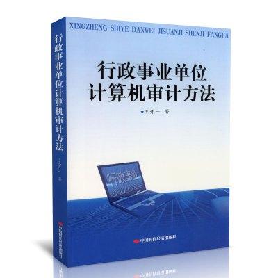 行政事业单位计算机审计方法 王开一 著 保证正版 中国时代经济出版社