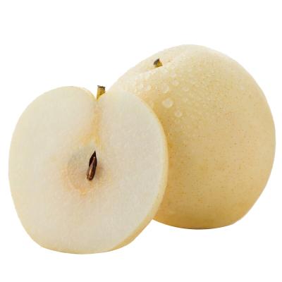 河北皇冠梨新鲜水果梨子2.5斤当季雪梨砀山梨翠冠梨