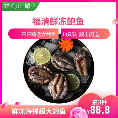 【拍3件!88.8元】鮮有匯聚 福清鮑魚10只裝 活凍鮑魚 營養美味海鮮 鮑魚