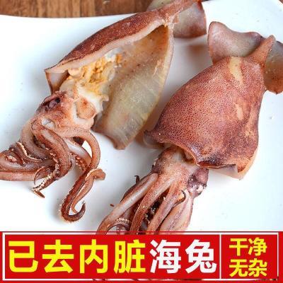 新曬去內臟海兔干貨烏賊干墨魚干海鮮干貨海產筆管海兔 500g