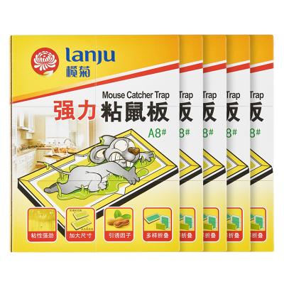 榄菊 粘鼠板老鼠贴 灭鼠板捕鼠器 5板装 加厚款 老鼠夹物理捕捉吱吱板 驱鼠神器抓老鼠胶