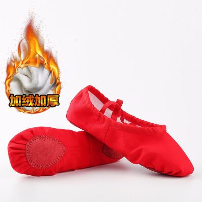 因樂思(YINLESI)芭蕾舞蹈鞋 男女童舞蹈鞋 成人女款軟底練功體鞋貓爪兒童表演跳舞鞋