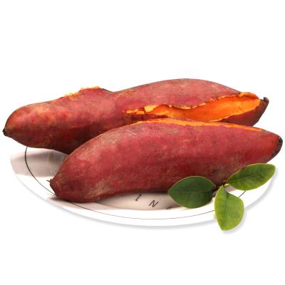 薯家上品 福建六鰲紅薯中大果 帶箱約10斤 沙地紅心蜜薯新鮮蔬菜現挖番薯烤地瓜