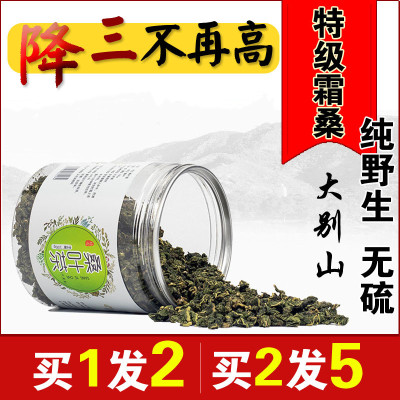 桑叶茶 正品特级冻干霜后新鲜桑树叶天然送蒲公英养生野生 桑叶茶
