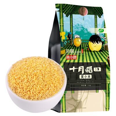 十月稻田 東北黃小米粥新米吃的小黃米月子米熬粥食用五谷雜糧米1kg