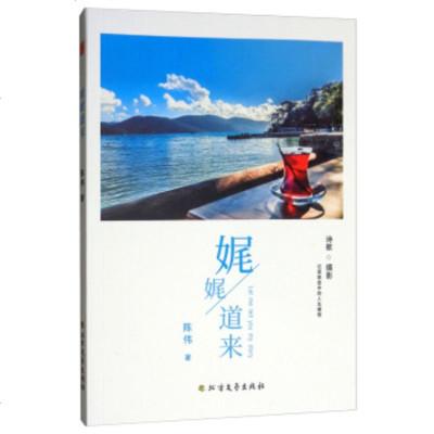 娓娓道來9787531741633北方文藝出版社陳偉