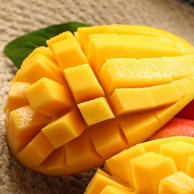 鮮菓籃 海南貴妃芒特大果8斤裝 新鮮水果芒果 熱帶水果 蘇寧生鮮