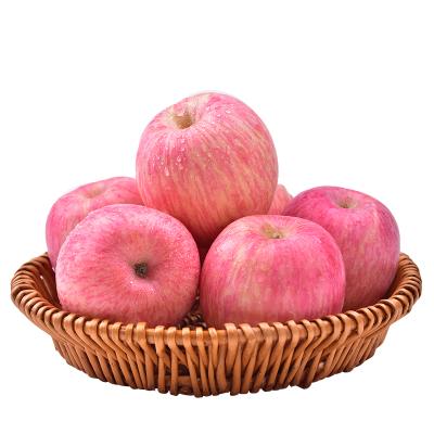 【精品苹果】烟台红富士苹果净重5斤装 果径80mm左右 烟台苹果 新鲜水果 苏宁苹果 水果生鲜