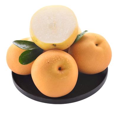 【顺丰快递】山东特产正宗秋月梨 5斤装(净重4.5斤)单果80mm以上 甜冰糖蜜梨子 新鲜水果非丰水梨