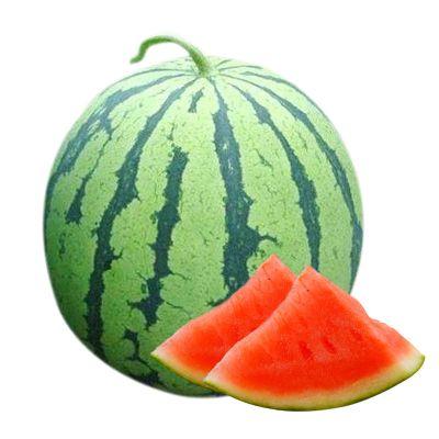 超甜8424新鮮皮薄冰糖麒麟西瓜河南夏邑現摘農家當季孕婦水果 4-5斤(超劃算)