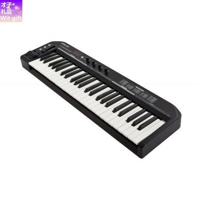 【品牌優選】 KS49A專業midi鍵盤midi控制器編曲 KS25A(25鍵)黑色升級版(兼容IPADiphone需要