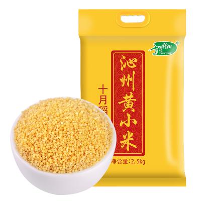 十月稻田沁州黃小米山西特產米脂吃的小黃米熬粥月子2.5kg