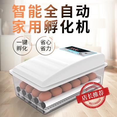 納麗雅(Naliya)孵化器全自動小型家用小雞鴨鵝蛋孵化機智能孵蛋器恒溫水床孵蛋箱 40枚水床雙電帶照蛋泡沫箱體