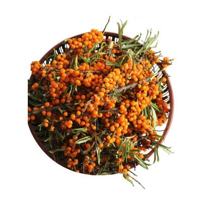 博多客山西 新鲜沙棘果 500g 鲜果吕梁酵素水果可榨果汁沙棘果茶生鲜新鲜