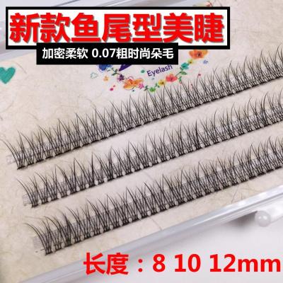 韓國新款嫁接睫毛朵毛0.07粗魚尾型單簇種植假眼睫毛自然個性時尚