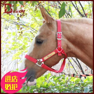 /八尺龍馬術籠頭牽馬紡織龍頭馬龍套純銅銘牌馬匹裝備