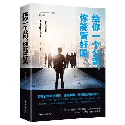 給你一個公司你能管好嗎 企業團隊管理方面的書籍 不懂帶團隊你就自己累 狼性團隊管理領導力執行力市場營銷管理書籍