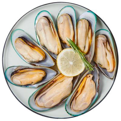 寰球渔市 半壳青口贝 1斤装 火锅烧烤食材 500g/盒 新西兰进口 海贝 冷冻海鲜水产 生鲜